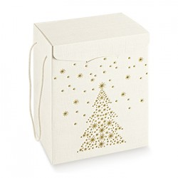 Cardboard packaging with Christmas decoration
