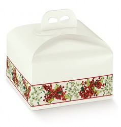 Cake container transport box - Cake delivery box