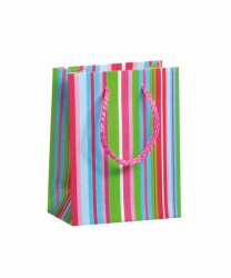 Bag with cloured stripes